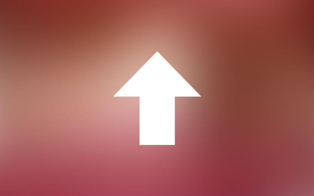WordPress Plugins and Themes Update 該不該馬上升級外掛與佈景